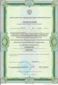 лицензия_611x891